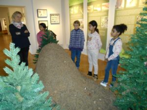 děti u mraveniště